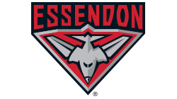 Essendon Football Club Custom Temporary Tattoo
